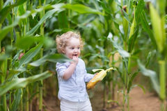 Beautiful curly baby girl eating corn in a field Royalty Free Stock Photos