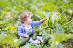 Beautiful curly baby girl next to zucchini plant Stock Photography