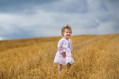 Beautiful curly baby girl walking in a golden wheat field Royalty Free Stock Image