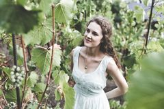 Beautiful curly hair girl in a light blue simple dress in a vineyard. Beautiful smiling curly hair brunette in a light blue simple dress in a vineyard royalty free stock images