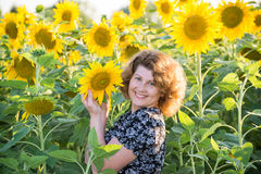 Beautiful curly-haired woman in field of sunflowers Stock Photos