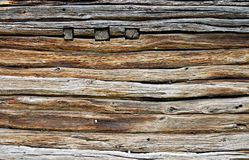 Beautiful cut of tree. Interesting brown wooden structure for a background Royalty Free Stock Photo