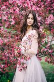 Beautiful cute brunette girl with long hair, bride in lace transparent boudoir gown, decoration, near the tree blossoms with flowe stock photography
