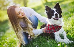 Beautiful cute dog in nature taken for walk by people. Beautiful cute dog in nature taken for walk by couple royalty free stock photos