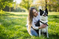Beautiful cute dog in nature taken for walk by people. Beautiful cute dog in nature taken for walk by couple royalty free stock photography