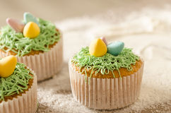 Beautiful cute Easter cupcakes with Easter decorations Royalty Free Stock Photos