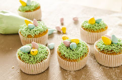 Beautiful cute Easter cupcakes with Easter decorations. Isolated on a wood background while cooking by chef stock photography