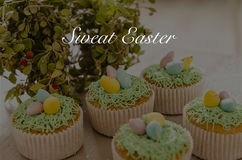 Beautiful cute Easter cupcakes with Easter decorations Royalty Free Stock Photo
