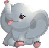Beautiful cute elephant Stock Images