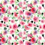 Beautiful cute floral herbal gorgeous magnificent wonderful spring colorful pink and red roses with leaves pattern watercolor Stock Images