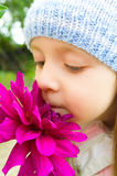 Beautiful girl smelling flower in garden. Beautiful  cute girl smelling pink flower in garden Royalty Free Stock Photos