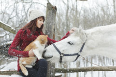 Beautiful cute girl with white horse and big fluffy cat in winter snowy park. Pretty girl caress white horse. Portrait of girl and. Happy young people on stock photography