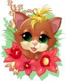 Beautiful cute kitten Stock Photo