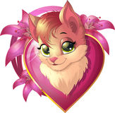 Beautiful cute kitten Royalty Free Stock Images