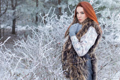 Beautiful cute sexy young girl with red hair walking in a snowy forest among the trees missed first trimester bushes with red. Beautiful sexy young girl with red Stock Image