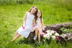 Free Beautiful Cute Sisters In A Summer Garden Royalty Free Stock Photo - 177617835