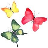 Beautiful cute sophisticated elegant wonderful tender gentle spring green red yellow butterflies pattern watercolor Royalty Free Stock Photos