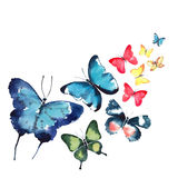 Beautiful cute sophisticated magnificent wonderful tender gentle spring blue green red yellow butterflies pattern watercolor Stock Image