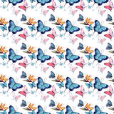 Beautiful cute sophisticated magnificent wonderful tender gentle spring colorful butterflies pattern watercolor. Hand illustration stock illustration