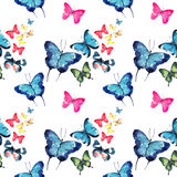 Beautiful cute sophisticated magnificent wonderful tender gentle spring colorful butterflies pattern watercolor Stock Photos