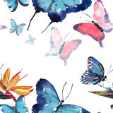 Beautiful cute sophisticated magnificent wonderful tender gentle spring colorful butterflies pattern watercolor Royalty Free Stock Photos