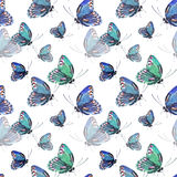 Beautiful cute sophisticated magnificent wonderful tender gentle spring colorful butterflies pattern Stock Images