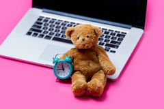 Beautiful cute teddy bear with alarm clock and cool laptop on th Royalty Free Stock Photo