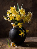 Beautiful daffodils in black vase Stock Photo