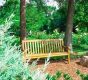 Beautiful Dahlias. The Beautiful Dahliahs in the garden Royalty Free Stock Photo