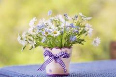 Beautiful daisy flowers in small decorative vase Royalty Free Stock Photos