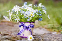 Beautiful daisy flowers in small decorative vase Royalty Free Stock Photography