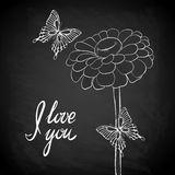 Beautiful Daisy with flying butterfly outline drawn on the blackboard with the text Stock Photography