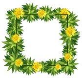 A beautiful daisy frame. Illustration royalty free illustration