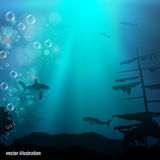 Beautiful and dangerous underwater world Royalty Free Stock Photography