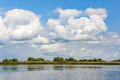Beautiful Danube Delta Royalty Free Stock Images