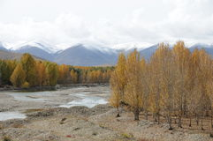 Beautiful Daocheng county Stock Image