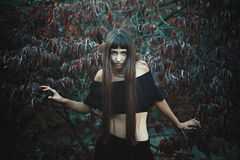 Beautiful dark gypsy. Posing like a witch . Halloween and fantasy royalty free stock photography