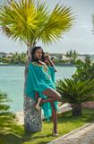 Beautiful dark-skinned girl near the palm tree. Photo shoot of a beautiful dark-skinned latina on the background of nature, in the amphitheatre, on the Royalty Free Stock Photos