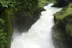 Beautiful Davis waterfall Stock Image
