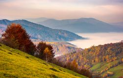 Beautiful dawn in mountainous autumn landscape. Red foliage on trees and fog in the distant valley Royalty Free Stock Image