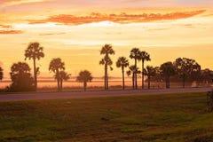 The Beautiful Dawn at Okahumpka royalty free stock image