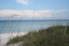 Beautiful day at the beach. A view of the ocean over the sea grass covered dunes Stock Image