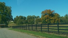 Beautiful Day. A bright sunny day on a Pennsylvania farm Stock Images