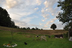 Beautiful Day on a Farm Royalty Free Stock Photography