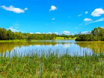 Beautiful day near the lake at Jells park. In Wheelers hill, Victoria, Australia Stock Image