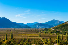 Beautiful day over the fertile plains in southern Croatia Royalty Free Stock Photo