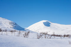 Beautiful day in the Swedish mountains. With a blue sky in the background Royalty Free Stock Photography