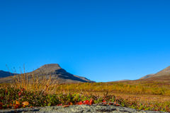 Beautiful day in the Swedish mountains Stock Photography