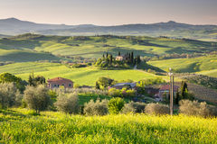 Beautiful day in Tuscany Royalty Free Stock Photo