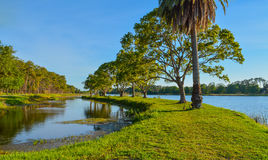 A beautiful day for a walk and the view of the island at John S. Taylor Park in Largo, Florida. A beautiful day for the view on the island at John S. Taylor Stock Photography
